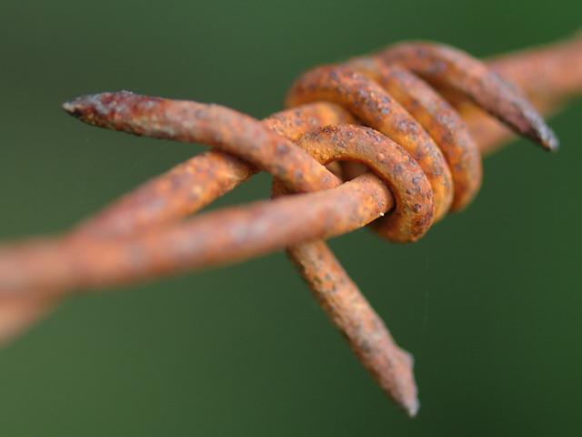 Ties that Bind
